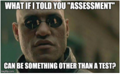 assessment-not-test